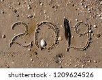 close up top view bird feather... | Shutterstock . vector #1209624526