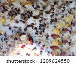 top view of healthy breakfast ... | Shutterstock . vector #1209624550
