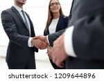 business shaking hands in the... | Shutterstock . vector #1209644896