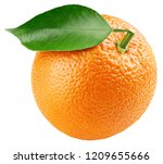 ripe whole orange citrus fruit... | Shutterstock . vector #1209655666