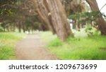 blurred  background of empty...   Shutterstock . vector #1209673699