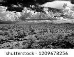 sonora desert in infrared... | Shutterstock . vector #1209678256