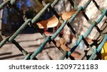 old dirty rusty wire mesh fence ... | Shutterstock . vector #1209721183