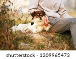 the master  interact with a pet ... | Shutterstock . vector #1209965473