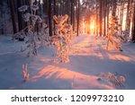 winter. christmas. christmas... | Shutterstock . vector #1209973210