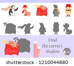 find the correct shadow ... | Shutterstock .eps vector #1210044880