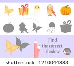 find the correct shadow ... | Shutterstock .eps vector #1210044883