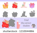 find the correct shadow ... | Shutterstock .eps vector #1210044886