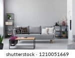 copy space on the wall of...   Shutterstock . vector #1210051669