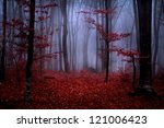 beautiful autumn day into the... | Shutterstock . vector #121006423