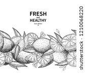 lemon border drawing. citrus... | Shutterstock . vector #1210068220