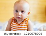 a portrait of a curious  baby... | Shutterstock . vector #1210078006