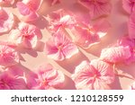 large pink petals on a rough... | Shutterstock . vector #1210128559