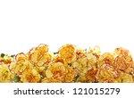 beautiful blooming carnation... | Shutterstock . vector #121015279