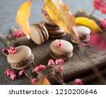 cake macaron with chocolate...   Shutterstock . vector #1210200646