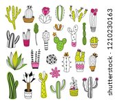 cactus and succulent... | Shutterstock .eps vector #1210230163