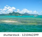 The tropical and transparent waters around the Ile aux Aigrettes, a small coral island declared a nature conservation site, during a boat trip. Mauritius, Indian Ocean.