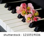 Quince Flower On Piano Flaps  ...