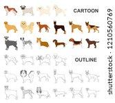 dog breeds cartoon icons in set ...   Shutterstock .eps vector #1210560769