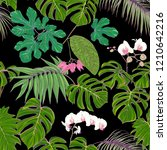 tropical plants and white... | Shutterstock .eps vector #1210642216