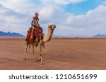 tourist woman in traditional... | Shutterstock . vector #1210651699