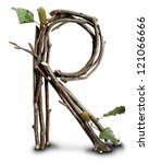 Photograph Of Natural Twig And...