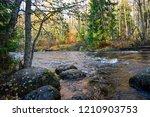 autumn forest river rocks...   Shutterstock . vector #1210903753