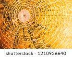 peel of ripe melon  yellow... | Shutterstock . vector #1210926640