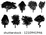 black tree silhouettes... | Shutterstock . vector #1210941946