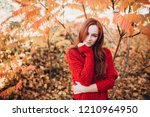 portrait of a young ginger... | Shutterstock . vector #1210964950
