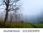 scary forest mist in autumn fog ... | Shutterstock . vector #1211023393