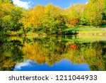 the pond of autumnal leaves ... | Shutterstock . vector #1211044933