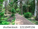 landscaping in the garden. the... | Shutterstock . vector #1211049136