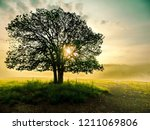 morning atmosphere with fog and ... | Shutterstock . vector #1211069806