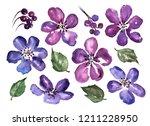 watercolor set of purple... | Shutterstock . vector #1211228950