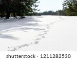 foot prints in the snow shown... | Shutterstock . vector #1211282530