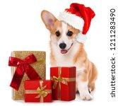 Stock photo welsh corgi dog with santa hat and christmas gifts sitting isolated on white background 1211283490
