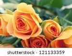 Stock photo orange roses on white background 121133359