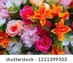 Beautiful Multicolored ...