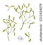 set with the branches of... | Shutterstock .eps vector #1211424079