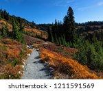 Fall Hiking On Mt Rainier ...