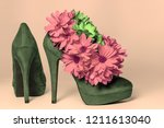 high heeled shoes decorated...   Shutterstock . vector #1211613040