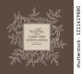 background with curry tree ... | Shutterstock .eps vector #1211619880