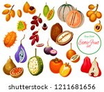 exotic fruits and tropical... | Shutterstock .eps vector #1211681656
