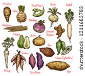 vegetables sketches with... | Shutterstock .eps vector #1211683783