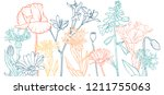 vector drawing flowers  floral... | Shutterstock .eps vector #1211755063