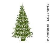 Fir Tree  Christmas Tree Or...