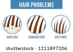 Hair Care.  Common Hair...