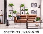 interior design created by... | Shutterstock . vector #1212025030