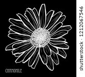 decorative chamomile  flower ... | Shutterstock . vector #1212067546